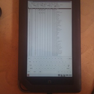 X11 running on Nook Color without Android stack - Dobrica